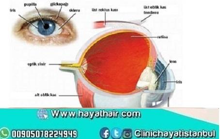 علاج شبكية العين في تركيا